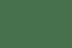Honey Rewarewa - 500g Tub